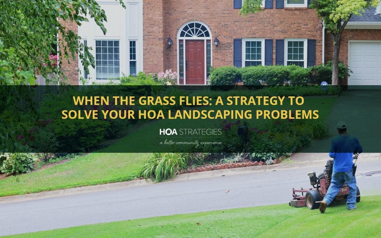 HOA Landscaping Strategy