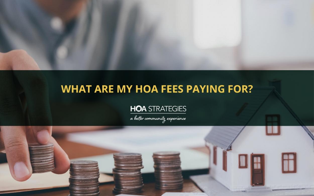 HOA Strategies - HOA Fees Explained